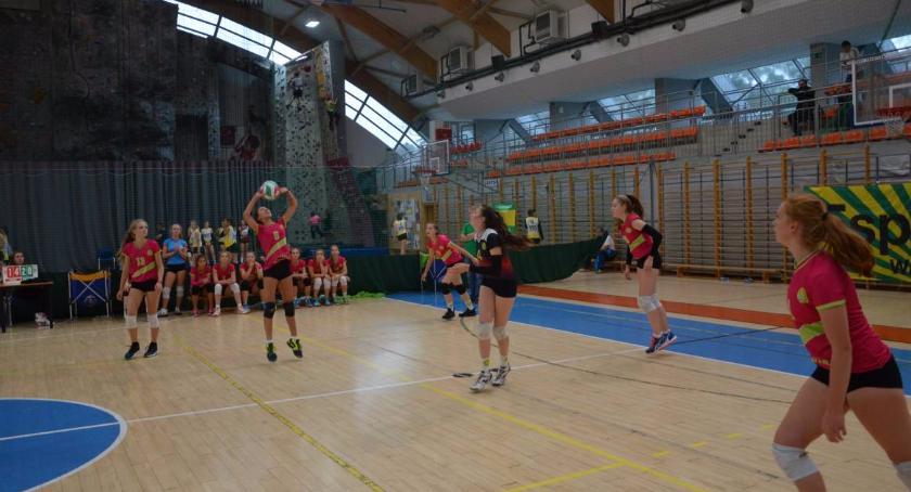 Siatkówka, Turniej Puchar Dyrektora Szkoły Gortata - zdjęcie, fotografia